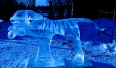 Tiger, the Chase, sculpted by David Ducharme and Jesse Forrester, 2nd place Realistic, High on Ice, 2012, Fort-St-John.